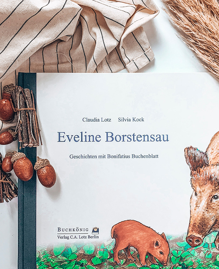 "Kinderbuch ""Eveline Borstensau"""